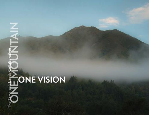 TLC_VISION-BOOK-11_06_14_WEB-READY-1
